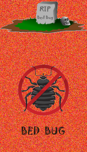 No bed bugs | Thermal Pest Control | Leesburg VA
